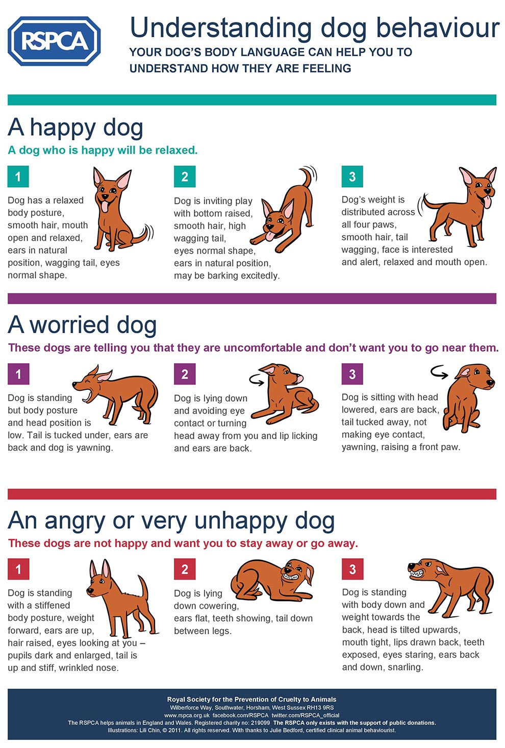 RSPCA Understanding Dog Behaviour