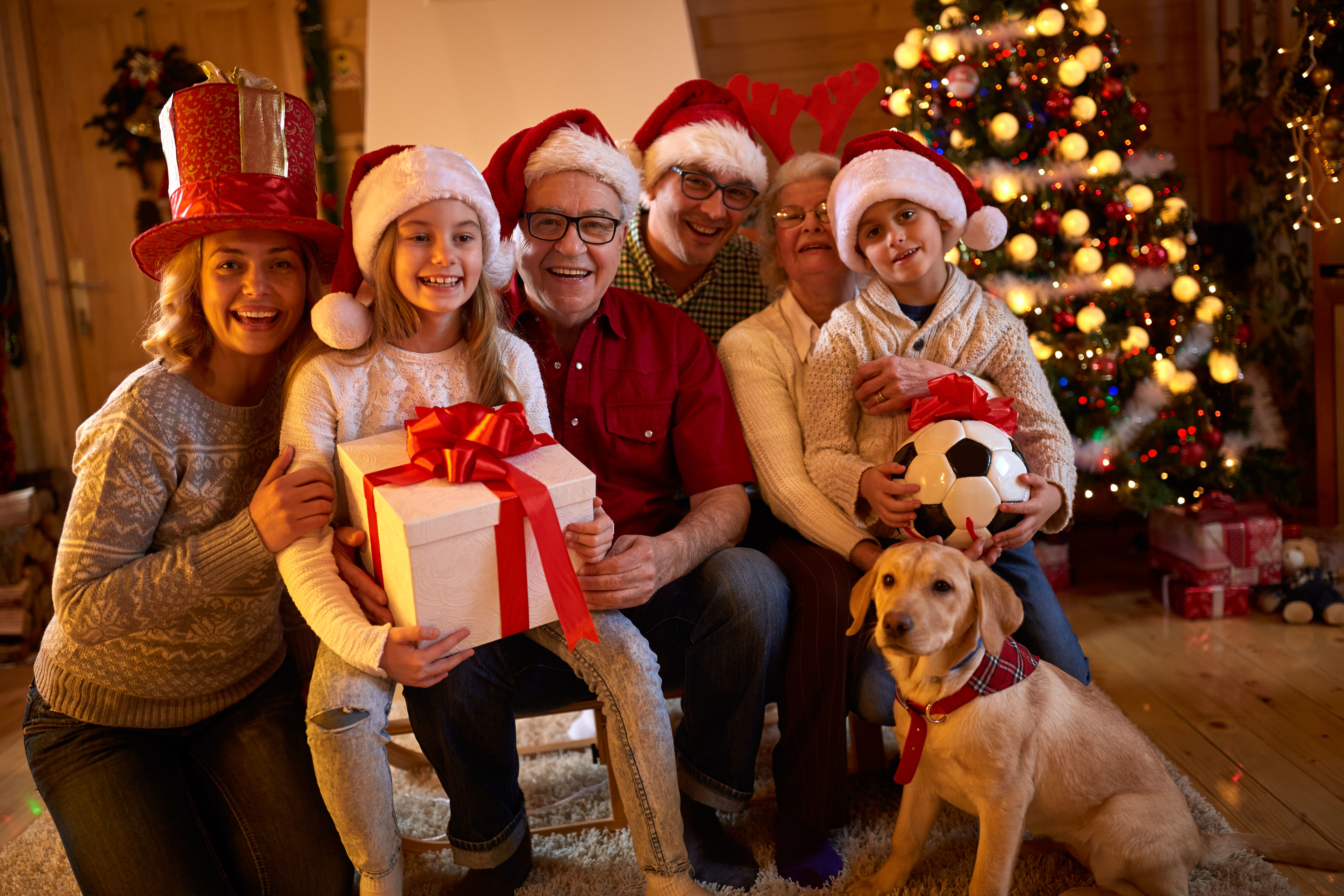Family Christmas with dog